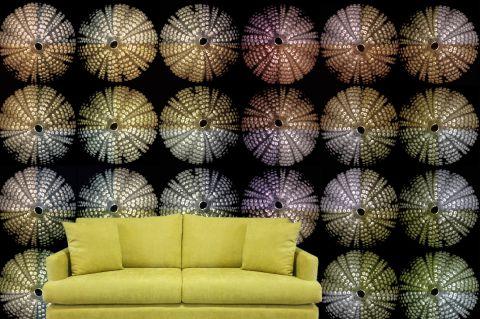 """Luxusní vliesová tapeta """"Sea urchins"""""""