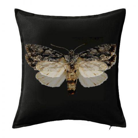 Designový dekorační povlak na polštář Moth