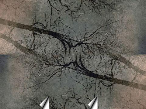 """Luxusní vliesová tapeta """"Branches"""""""