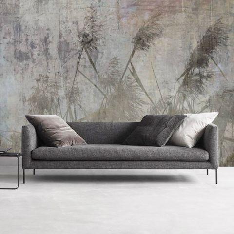"""Luxusní vliesová tapeta """"Reed in concrete"""""""